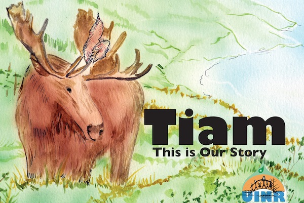 Tiam This is our Story PRINT COVER