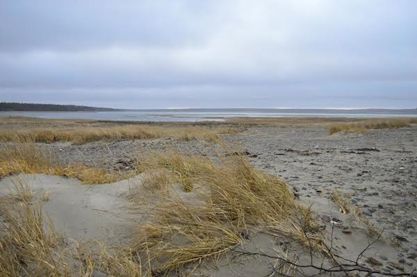 Big Glace Bay Beach, one of the areas ACAP's climate change workshops have been focusing on - photo: Jared Tomie